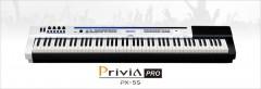 Цифровое пианино Casio PX-5SWE